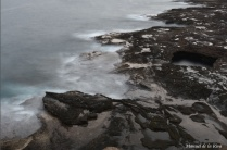 Silky-coast